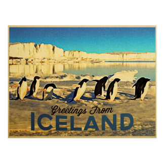 Pingüinos de Islandia Tarjeta Postal