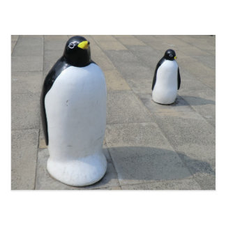 Pingüinos de la orilla del mar [2] tarjetas postales