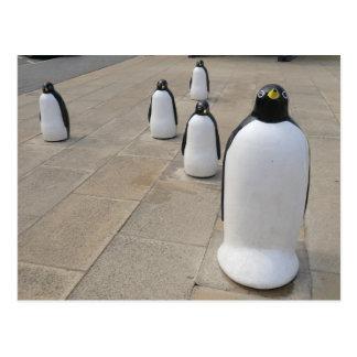 Pingüinos de la orilla del mar tarjetas postales