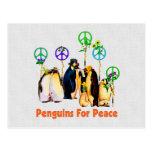 Pingüinos de la paz postales