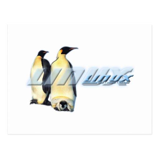 Pingüinos de Linux Tarjeta Postal
