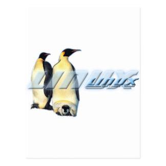 Pingüinos de Linux Tarjetas Postales