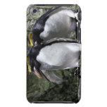Pingüinos de los macarrones, Georgia del sur Funda Case-Mate Para iPod