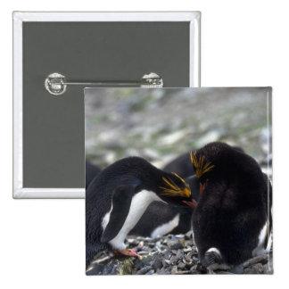 Pingüinos de los macarrones - preparación mutua/pa