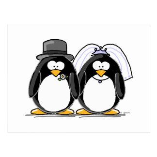 Pingüinos de novia y del novio tarjeta postal