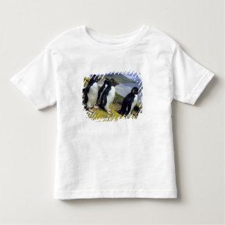 Pingüinos de Rockhopper, (chrysocome del Playera De Bebé