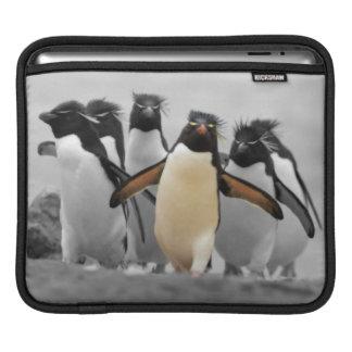 Pingüinos de Rockhopper Funda Para iPads