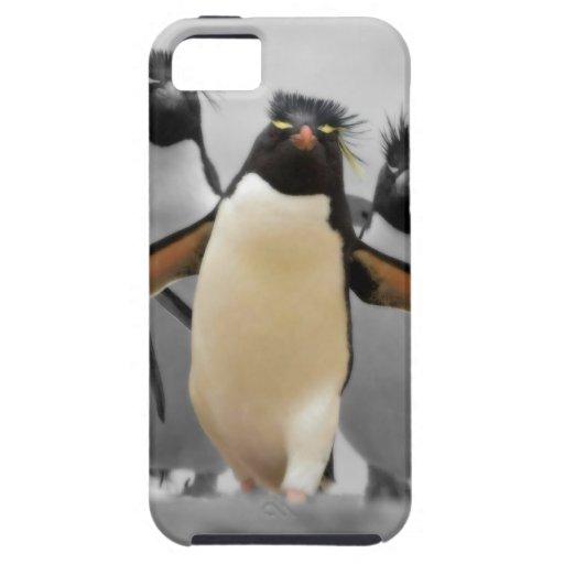 Pingüinos de Rockhopper iPhone 5 Carcasa