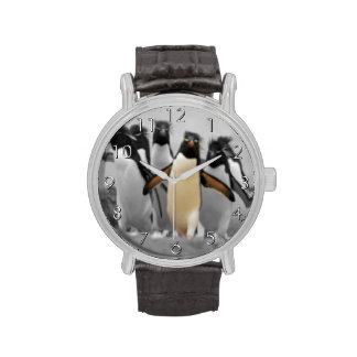 Pingüinos de Rockhopper Reloj