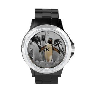 Pingüinos de Rockhopper Reloj De Mano