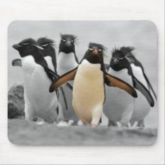 Pingüinos de Rockhopper Tapetes De Raton