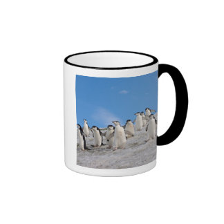 pingüinos del chinstrap, Pygoscelis la Antártida, Taza De Dos Colores