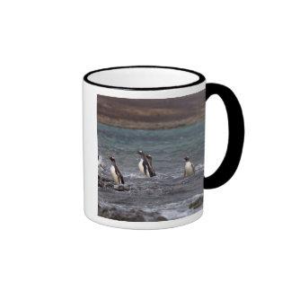 pingüinos del gentoo, Pygoscelis Papua, saltando Tazas De Café