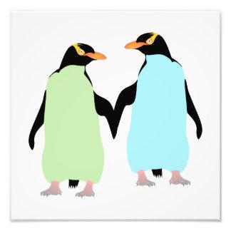 Pingüinos del orgullo gay que llevan a cabo las fotografías
