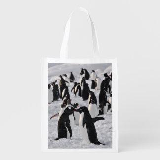 Pingüinos en el juego bolsas de la compra