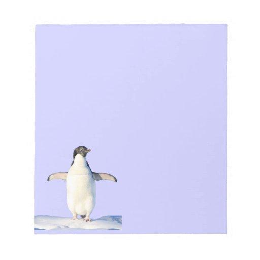 Pingüinos en el papel de carta de la nieve blocs de notas