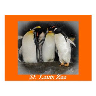 Pingüinos en el parque zoológico postal