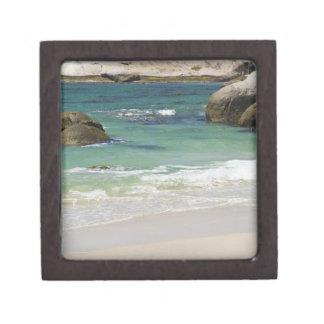 Pingüinos en la playa de los cantos rodados, ciuda caja de recuerdo de calidad