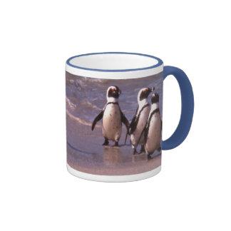 Pingüinos en la taza de la playa