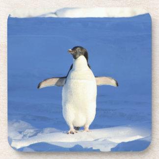 Pingüinos en los prácticos de costa del corcho de  posavasos de bebidas