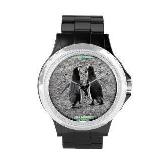 Pingüinos en reloj del amor