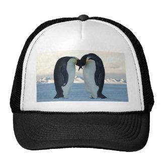 Pingüinos Gorros Bordados