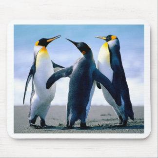 Pingüinos Mouse Pads