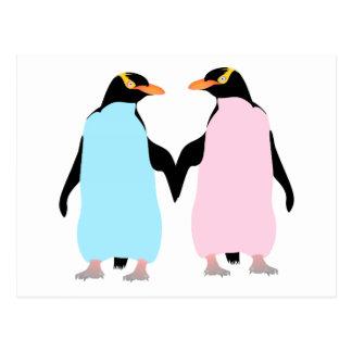 Pingüinos pájaros del amor postal