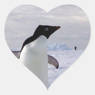 Pingüinos Pegatina En Forma De Corazón