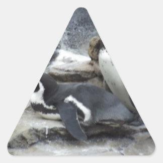 Pingüinos Pegatina Triangular