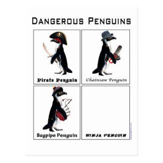 pingüinos peligrosos tarjetas postales