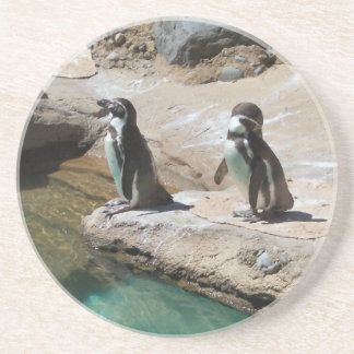 Pingüinos Posavasos De Arenisca
