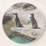 Pingüinos Posavasos Manualidades