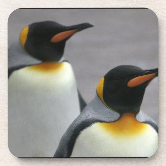 Pingüinos que marchan fijados de seis prácticos de posavasos de bebidas