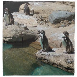 Pingüinos Servilletas De Papel