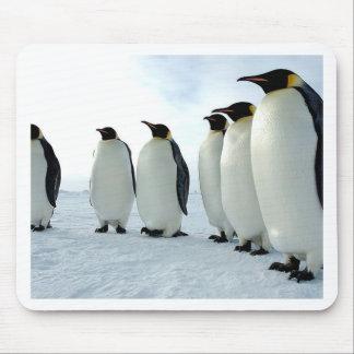 Pingüinos Tapetes De Ratón
