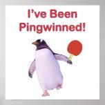 Pingwinned Penguin Ping Pong Poster