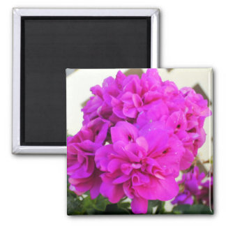 Pink! 2 Inch Square Magnet