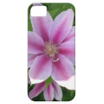 Pink a licious iPhone 5 cover