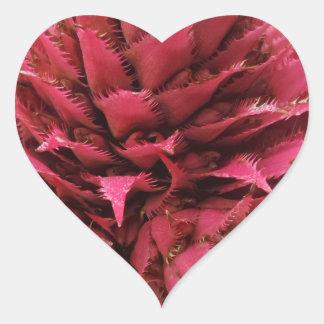 Pink Aechmea Flower Heart Sticker