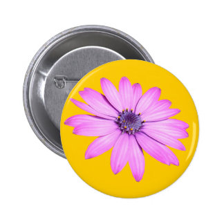 Pink Afrıcan Daisy With Transparent Background Button