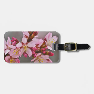 Pink Against A Gray Sky Japanese Cherry Blossoms Luggage Tag