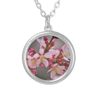 Pink Against A Gray Sky Japanese Cherry Blossoms Silver Plated Necklace