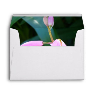Pink Against Green Envelope