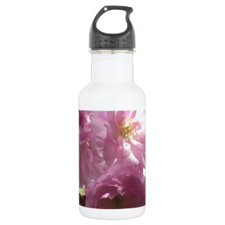 Pink Almond Branches Blossoms Flowers Tree Destiny Stainless Steel Water Bottle