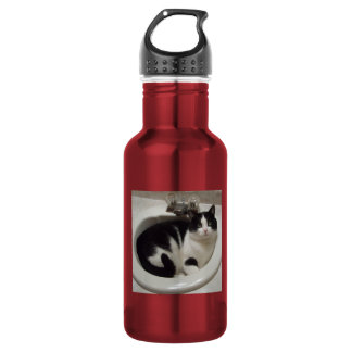 Pink aluminum with cat water bottle