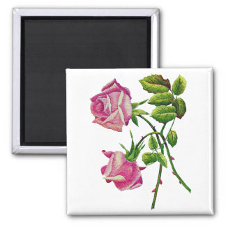 Pink American Beauty Roses in Embroidery Magnet