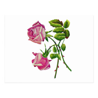 Pink American Beauty Roses in Embroidery Postcard