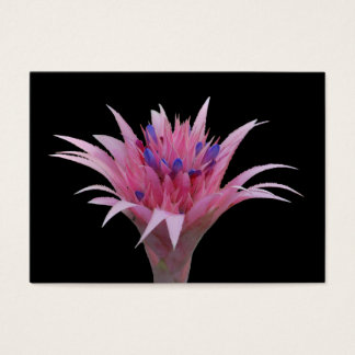 Pink and Blue Aechmea ACEO Business Card
