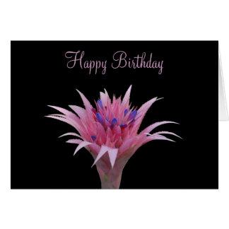Pink and Blue Aechmea Birthday Card